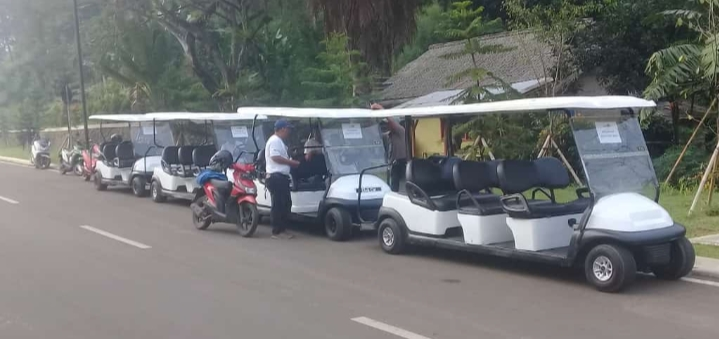 jasa rental golf car