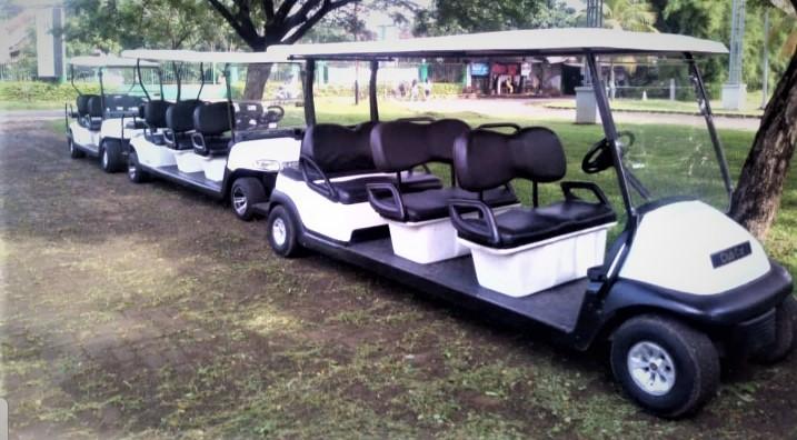 Sewa Mobil Golf di Depok